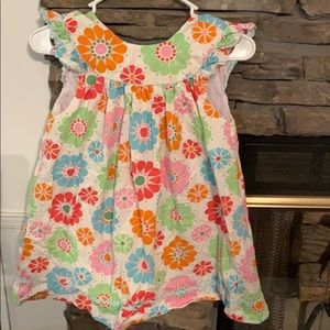 Adorable size 5 beehave dress